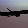 SAS 738 3