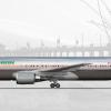 Boeing 767-300 - Bare Metal