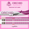 Orchid Airways Boeing 737-800 Livery & Seat Map