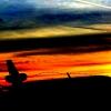 USPS MD-11