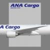ANA Cargo Boeing 777F