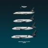 Boeing 737 fleet
