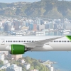 Kiwi Airways | 787 9 | Potential New Livery