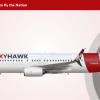 SkyHawk Boeing 737-800