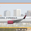 SunWest Boeing 737-800 (Arizona Cardinals Special Livery)