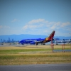 Southwest 737-700 New Livery