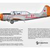 Yakovlev Yak-52 N8752Y