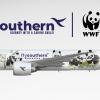 "Flysouthern Boeing 777-200ER ""The Panda"""