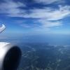 ANA 787-8 Wingview