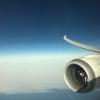 United 787-9 Wingview