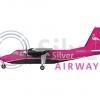 Silver Airways BN-2 Islander