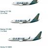 OASYS Boeing 737 Next Generation Family