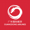 广东国际航空   Guangdong Airlines   Cover