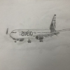 Boeing 737-800 Avelo Airlines