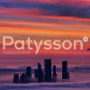 Preview Image of Patysson Airlines logo used from 2013 and onwards