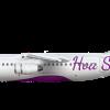 British Aerospace BAe 146 200 Hoa Sen Livery