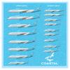 Coastal 2021 Fleet