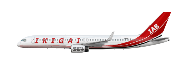 Newest Ikigai Air Bridge livery ( That I actually never used )