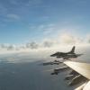 Viper formation