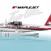 DeHavilland Canada DHC-6-300