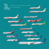Liveries of Indonesian Airlines
