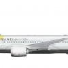 Royal Brunei B787