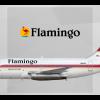 Flamingo Air Boeing 737 200