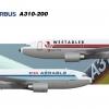 Airbus A310 (dual Westadler/Aérable livery)